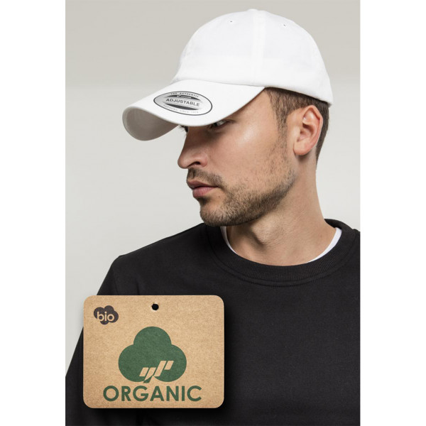 Low Profile Organic Cotton Cap FLEXFIT®